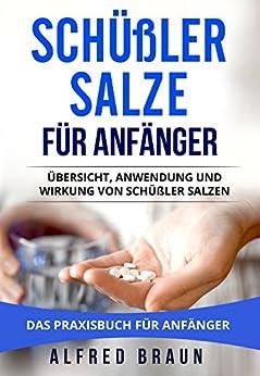 Schüßler Salze Für Anfänger: Übersicht, Anwendung Und Wirkung Von Schüßler Salzen. Das Praxisbuch Für Anfänger. por Alfred Braun epub