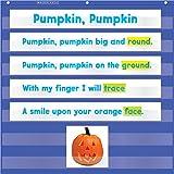 Scholastic Teacher 's Friend Mini Pocket Chart, mehrere Farben (tf5117)