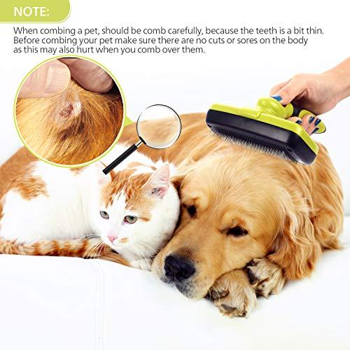 Zoom IMG-3 pecute spazzola autopulente per cani