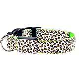 Yonfan LED Hundehalsband, LED Halsband Hund Batteriebetrieben Leuchthalsband mit Schnalle Verstellbar für Hunde, Katzen, Welpen, Haustiere Sicherheitshalsband Grün Klein