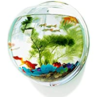Pin Si Jia Cuenco de peces acrílico para colgar en la pared, acuario, acuario, acuático, para mascotas, productos de montaje en pared, pecera