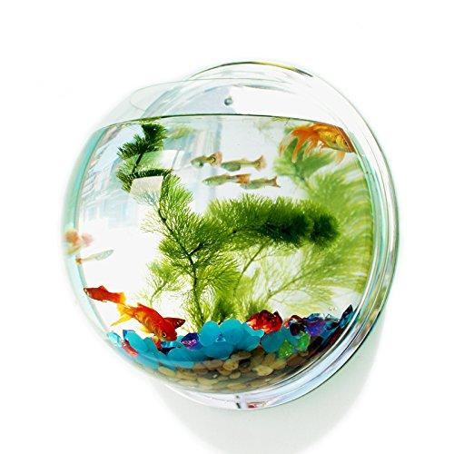 Pin Si Jia Cuenco peces acrílico colgar pared, acuario