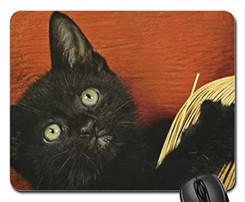 A black cat with a broom Mouse Pad, Mousepad (Cats Mouse Pad) - Cat Broom