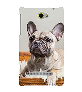 Famous Dog 3D Hard Polycarbonate Designer Back Case Cover for HTC Windows 8S