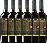 VINELLO 6er Weinpaket Primitivo - Papale Linea Oro Primitivo di Manduria 2016 - Varvaglione mit Weinausgießer | halbtrockener Rotwein | italienischer Wein aus Apulien | 6 x 0,75 Liter