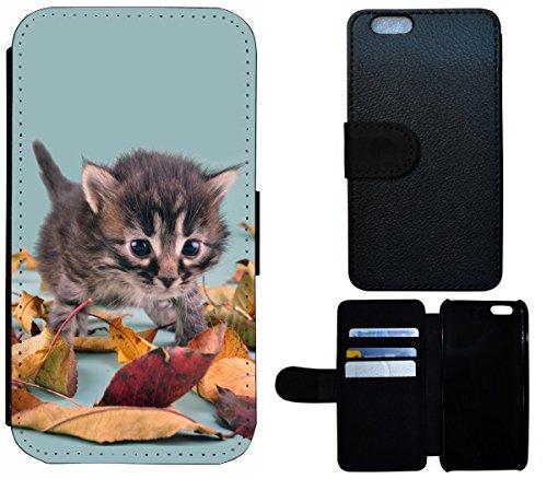 Flip Cover Schutz Hülle Handy Tasche Etui Case für (Apple iPhone 4 / 4s, 1460 Wolf Weiß Böse) 1468 Katze Katzen Baby Kätzchen Grau Blau