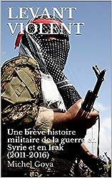 Levant violent: Une brève histoire militaire de la guerre en Syrie et en Irak (2011-2016) (Nouveaux conflits t. 3)