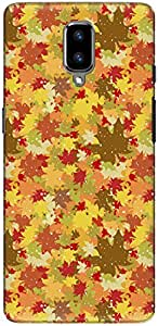 The Racoon Grip printed designer hard back mobile phone case cover for Oneplus 5. (Fall Leave)