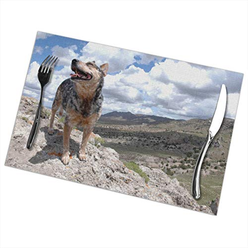 Dimension Art Australian Cattle Dog Placemats Set of 4 for Dining Table Washable Polyester Placemat Non-Slip Wear and Heat Resistant Kitchen Table Mats Easy to Clean - Australian Bootie