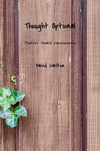 Thought Optional: Pointers Toward Consciousness (English Edition) (Sizzling Pan)