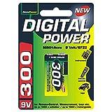 AccuPower AP300-2 wiederaufladbar Akku Block