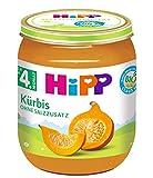 Hipp Bio Kürbis, 1er Pack (1 x 125g) (Bild: Amazon.de)