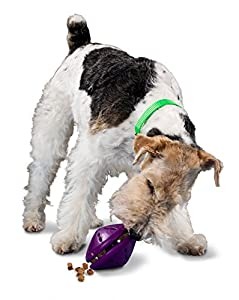 PetSafe Busy Buddy Twist 'n Treat Dog Toy