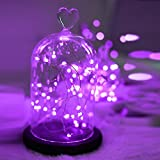Topfashion+ Purple 10ft 30 Mini Micro LED Copper Starry Fairy Strings Lights AA Battery Powered Operated Set of 1