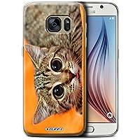 Stuff4 Hülle / Hülle für Samsung Galaxy S6/G920 / Scheues Kätzchen Muster / Lustige Tiere Kollektion