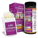 UTI infezione del tratto urinario test strips veloci e accurati. Kit bastoncini per test delle urine per chetoni, pH, glucosio, nitriti, leucociti e altro per monitorare la tua salute.