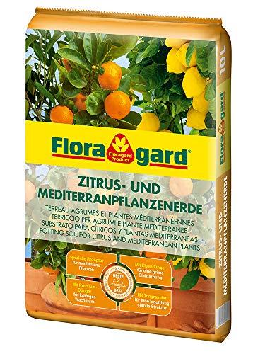Floragard Zitruspflanzenerde 10 L • für alle anspruchsvollen Zitruspflanzen • für Limetten-, Orangen- und Zitruspflanzen • mit dem Naturdünger Guano