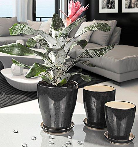 Pflanztöpfe aus Keramik: Mehr als 20 Angebote, Fotos, Preise ✓