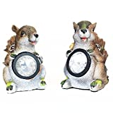 Oypla 2 x Squirrel Solar Powered Garden Lights