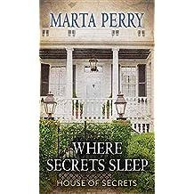 Where Secrets Sleep (Center Point Premier Fiction (Largeprint))