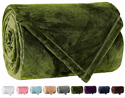 LBRO2M Fleece-Bettdecke, superweich, warm, flauschig, SAMT, weich, weich, gemütlich, für Doppelbett, King-Size-Bett, Fleece, grün, Twin(90 by 65 Inches) (King-size-betten Ensembles)