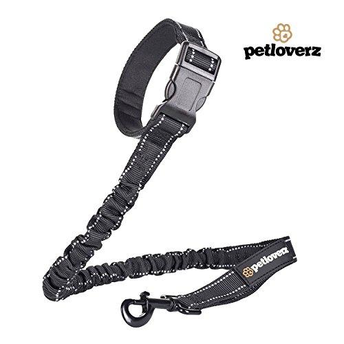 Elastische Flexi Hundeleine mit Clip zum Befestigen - 2 Handgriffe - Neoprene Schlaufe - Ruckdämpfer - Joggingleine - Fahrradleine - Bungee Leine - mit Reflektoren - Sicherheitstraining - Nylon - schwarz - PETLOVERZ