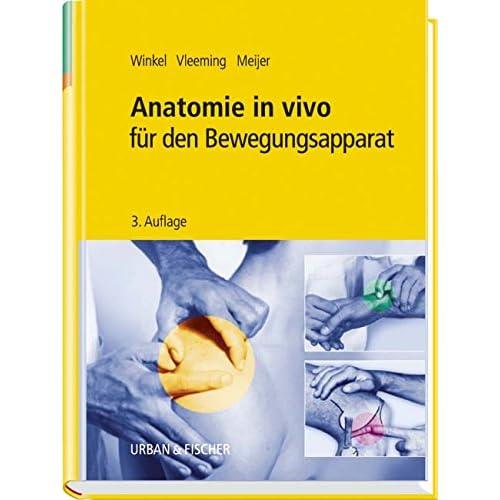 PDF] Anatomie in vivo für den Bewegungsapparat KOSTENLOS DOWNLOAD ...