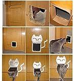 Lifepul Katzentür Groß (25cm X 23cm) 4 Wege Magnet-Verschluss Katzenklappe Hundeklappe Installieren Leicht mit Teleskoprahmen,weiß -