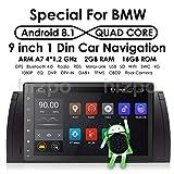 HIZPO Android 8,1 9 Zoll Quad Core Autoradio Doppel-Din Stereo für BMW E39 5er X5 E53 E39 Unterstützung GPS Navigation SWC Autoradio Audio Video WiFi 4G USB SD CAM-IN DAB+
