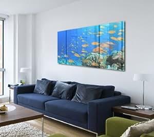 acrylglasbild wandbild hinter acrylglas acrylglas bild fische aquarium p4731 agp 100x50 cm. Black Bedroom Furniture Sets. Home Design Ideas