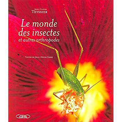 Le monde des insectes et autres arthropodes