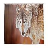 BIGJOKE Duschvorhang, Winter-Tier-Wolf, schimmelresistent, wasserdicht, Polyester, 12 Haken, 183 x 183 cm, Heimdekoration
