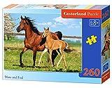 Castorland - B-27064-1 - Puzzle - Mare et Poulain - 260 Pièces