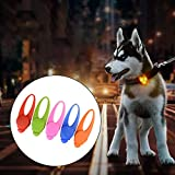 Hemore LED-Hundehalsband mit Clip, für Hundehalsband, LED-Licht, für Hundehalsband, wasserfest, Sicherheitslichter von Hunden und Katzen bei Nacht, zufällige Farbauswahl, Batterien im Lieferumfang enthalten