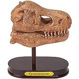 Moses. 40209Juego de Desenterrar dinosaurios de cráneo T-Rex, Tyrannosaurus, Juego