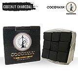 COCOYAYA Coconut Odorless Square Shaped Hookah Charcoals Charcoal Coal Coals for Hookah (250gm)