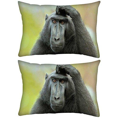 2-stuck-schwarz-ape-rechteck-uberwurf-werfen-kissenbezug-decoarative-kissen-fall-305-x-457-cm