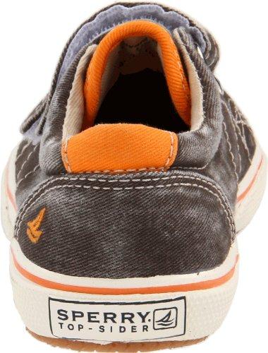 Keds Kids Sperry Halyard H&L cb42394, Baskets mode garçon Marron-TR-SW1074