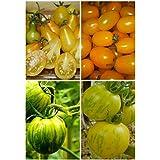 La germinación de cocina 95% + 6 Grupos para ciertos Vegetable Seeds 4 en 1 porción para el jardín ornamental de alta calidad Nueva 5
