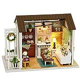 Decdeal DIY Puppenhaus Kit Literarisch Wohnzimmer 3D Holz Miniaturhaus mit LED Licht Kunsthandwerk...