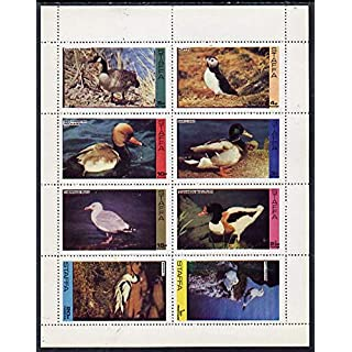 Staffa 1974 Water Birds #01 (Mallard, Puffin, Shelduck, Avocet, etc) perf set of 8 values (0.5p to 20p) u/m GOOSE POCHARD MALLARD GULL KITTIWAKE DUCKS JANDRSTAMPS (9586)