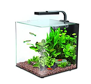 interpet nano led aquarium komplettset haustier. Black Bedroom Furniture Sets. Home Design Ideas