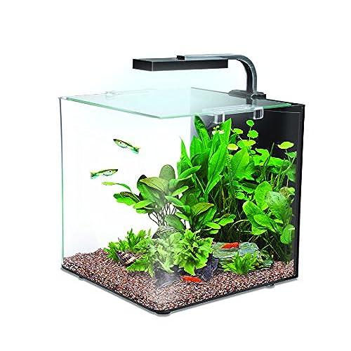 Small fish tanks for Mini fish tank