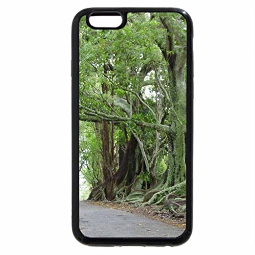 iPhone 6S / iPhone 6 Case (Black) Country Lane with Moreton Bay Figs