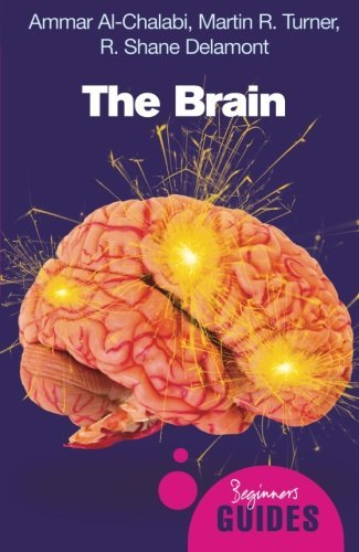 The Brain: A Beginner's Guide (Beginner's Guides): Written by Ammar al-Chalabi, 2008 Edition, (1st Edition) Publisher: Oneworld Publications [Paperback]
