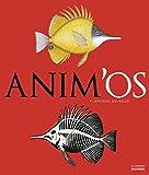 Image de Anim'os