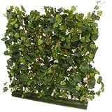 suchergebnis auf f r sichtschutz kunstblumen pflanzen wohnaccessoires deko. Black Bedroom Furniture Sets. Home Design Ideas