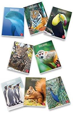 Pigna 02254391r Cahier A5, A5, A5, 10 pièces B073QYP2WT | Emballage Solide  36b590