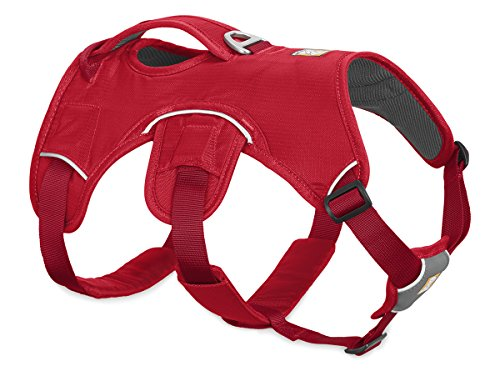 Ruffwear Multi-Use Dog Harness, Rugged Environments, Working Dogs, Small Breeds, Adjustable Fit, Size: Small, Red Currant, Web Master Harness, 30102-615S