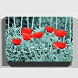 Big Box Art Canvas Print 24 x 16 inch (60 x 40 cm) Red Poppy Field Flowers (6) - Canvas Wall Art Picture Ready to Hang - Free Delivery